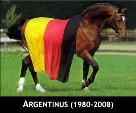 argentinus.jpg